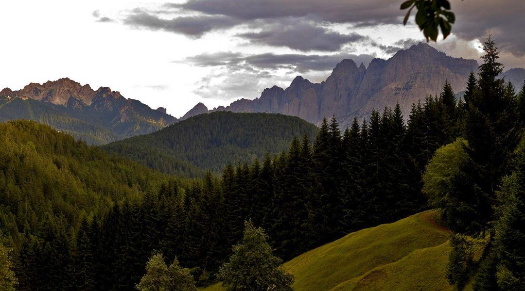 Tarvisiano. Una foresta millenaria da scoprire al confine con Austria e Slovenia